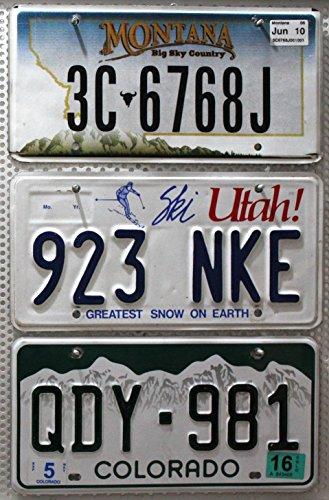 Preisvergleich Produktbild 3er SET / LOT # US Staaten Nummernschilder MONTANA + UTAH + COLORADO Blechschilder # USA Autoschilder