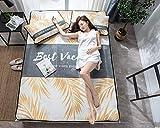 zlzty Summer Ice Silk Jacquard Sandwichmatte Klimaanlage Sitze, Einzelbettbezug, Einzelbett, Kingsize-Bettwäsche Setduvet Single @ Elton_135 * 200 DREI Stück
