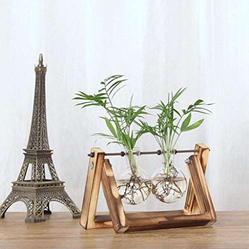 EDAHBJNEST5MK Vintage Creative Hydroponic Plant Transparent Vase Wooden Frame Coffee Shop Room Glass Tabletop Plant Bonsai