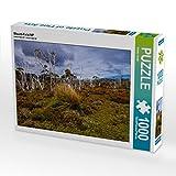 Mount-Field NP - Puzzle orizzontale, 1000 pezzi