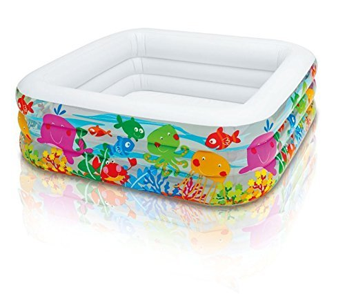 Intex-57471NP-Pool-Clearview-Aquarium