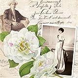 """""""Mr y Mrs Martinez–Pack de 20servilletas de papel–33x 33cm–3ply–Vintage Collage"""
