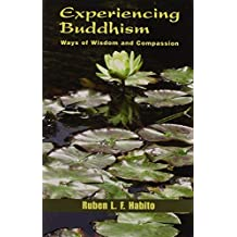 Experiencing Buddhism: Ways Of Wisdom And Compassion (Faith Meets Faith Series) by Ruben L. F. Habito (2005-03-30)