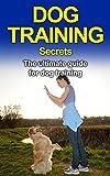 Dog Books: Beagle Training: Dog Training Secrets (Labrador Retriever, Yorkshire Terrier, Siberian Husky, Poodle Training) ((Dogs, Training, Rottweiler Training))