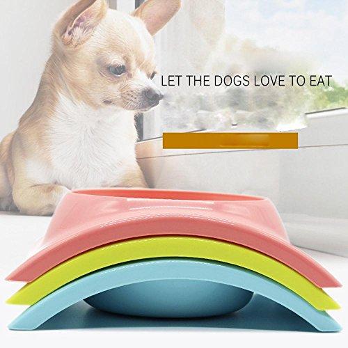 xueyan& Teddy Pudel täglichen Notwendigkeiten Hund Schüssel Katzenschüssel pet Schüssel essen Töpfe Töpfe Keramik Reis Mahlzeit Feeder, pink, 15*6