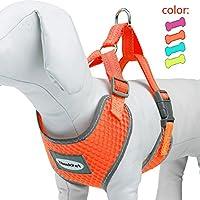 ThinkPet DL-HARNESS-PD20004-1-M-O, ThinkPet Atmungsaktives Hundegeschirr aus Weichem Air Mesh Gewebe, reflektierend, Mittelgroß, Neon-Orange