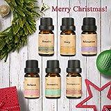 Essort 6×10ML Oli Essenziali di Altissima qualità, Oli Essenziali Top 6, di Altissima qualità, Aromaterapia Umidificatore Oli Kit, Puri al 100%, Migliore per Il Regalo