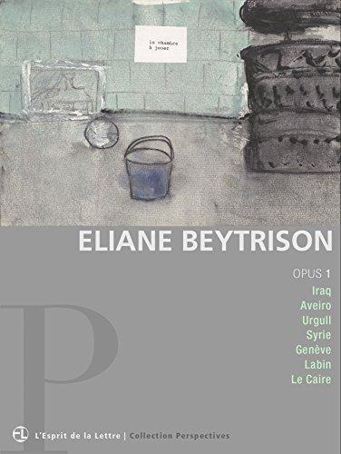 Eliane Beytrison | opus 1: Iraq | Aveiro | Urgull | Syrie | Genève | Labin | Le Caire (Perspectives)