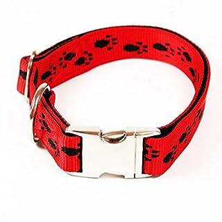 Premium Hundehalsband,