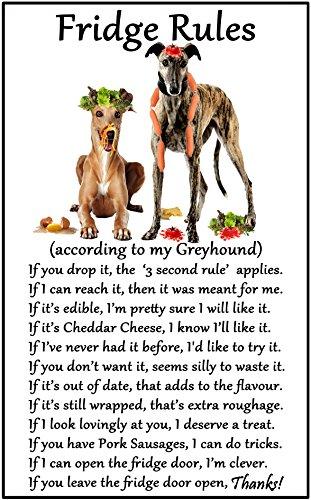 greyhound-dog-gift-fridge-rules-large-flexible-fun-fridge-magnet-size-16cms-x-10-cms-approx-6-x4