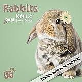Rabbits Rule - Kaninchen 2019 - 18-Monatskalender (Myrna-Kalender)
