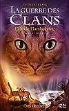 La guerre des Clans - cycle V tome 04 : L'Etoile flamboyante (Hors collection sériel t. 4)