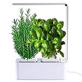 VASO SMART- Smart Garden - serra idroponica per piante, vaso intelligente, grow box - Orto da interno 100% Bio - Coltiva le erbe aromatiche- lampada smart luce Led inclusa - dimensioni 28,5 x 26,5 x 37 cm