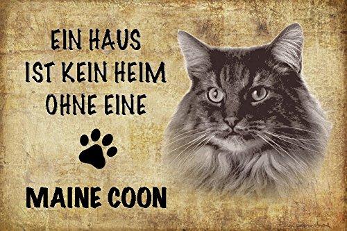 EIN Haus ist kein heim ohne eine Maine Coon Katze Schild aus Blech, Metal Sign, tin