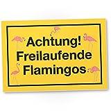 DankeDir! Achtung Freilaufende Flamingos, Kunststoff Schild mit Spruch, Wanddeko/Party Deko/Dekoration Wohnung - süße Geschenkidee Geburtstagsgeschenk - Geschenk Freundin