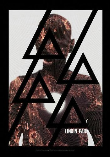Linkin Park Bandera Bandera Póster Burn It Down