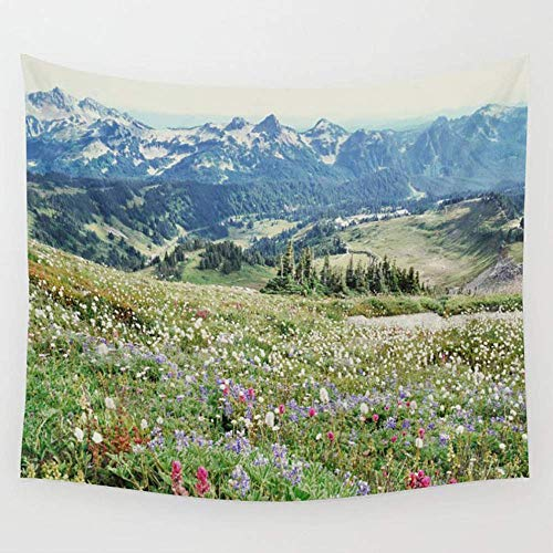BAOQIN Tapisserie Wildflower Meadow Wall Tapestry Hanging Tapestries Wall Art for Living Room Bedroom Dorm Decor 80 X 60 Inch (Wandbehang-quilt-rack)