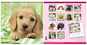 "2013 Month To View Large 12"" Spiral Bound Square Photo Wall Calendar Xmas Gift - Playful Puppies - 0011 Puppy Dogs"