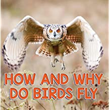 How and Why Do Birds Fly: Bird Books for Kids