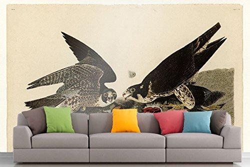 The Museum Outlet Roshni Arts®-kuratierte Art Wall Mural-Audubon (- Great-Footed Hawk-Teller 16| selbstklebend Vinyl Ausstattung Décor Art Wand-121,9x 91,4cm Footed Teller