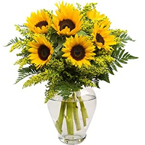 Sun is Shining Flower Bouquet with Free Delivery - Send a Gorgeous Arrangement of Sunflowers and Seasonal Foliage Surrounded by Leather Leaf