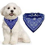 AGIA TEX Hundehalsband mit Hals-Tuch verstellbar Bandana für Hund Katze Farbe Blau Größe L = 55 cm lang