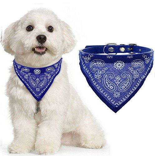 AGIA TEX Hundehalsband mit Hals-Tuch verstellbar Bandana für Hund Katze Farbe Dunkel Blau Größe XS = 33cm Lang