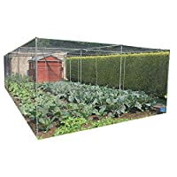 Gardening-Naturally Large Walk-In Vegetable Cage (2m x 4m) - More