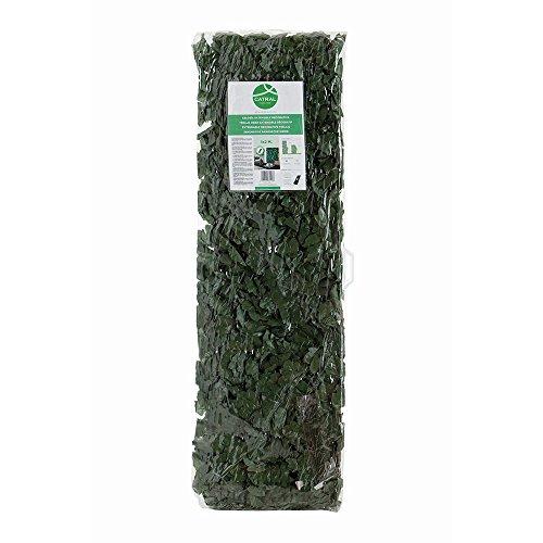 Catral Treillis Extensible avec Feuilles et bourgeons 0.50x1.50 Vert
