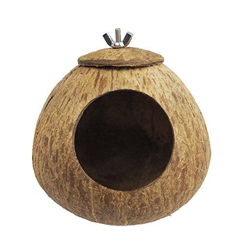 Maison du Hamster Omem Bird Maison de noix de coco, noix de coco coquillages Peut fixe en bambou, cages à oiseaux, cages pour hamster (M)