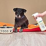 Bio-Reiniger und Geruchsneutralisierer Spray Probisa Micro-Vet 813 für Hund, Katze, Nager und Haustiere in Wohnung, Käfig und Stall (Komplettset – 0,5 Liter Konzentrat ergeben 25 Liter gebrauchsfertigen Geruchskiller) - 4