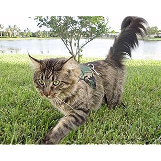 mynwood cat jacket/harness green combat adult cat - escape proof Mynwood Cat Jacket/Harness Green Combat Adult Cat – Escape Proof 51oJN9pduLL
