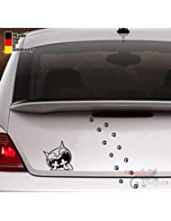 Arme Mieze Katzen Autoaufkleber Aufkleber