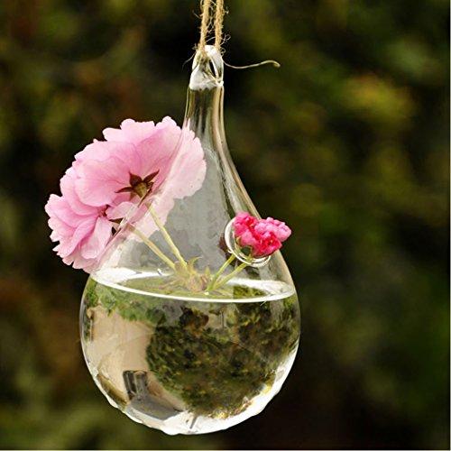 vase goutte d 39 eau suspendu en verre transparent pour plantes fleurs d coration de jardin maison. Black Bedroom Furniture Sets. Home Design Ideas