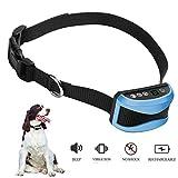 Best Bark Colliers - ZRYstore Digital anti écorce Dog collier d'entraînement avec Review