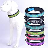 JKLYZXS Hundehalsband mit Namen und Telefonnummer Bestickt, Personalisierter Justierbarer Klassischer Fester Kragen für Mittleren Großen Hund (L: (Anzug für 46-58 cm Hals), Gras-Grün)
