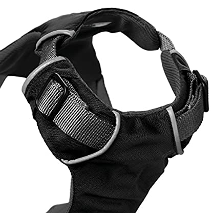 RUFFWEAR Car Safety Harness for Dogs, Miniature Breeds, Adjustable Fit, Size: XX-Small, Obsidian Black, Load Up Harness 5