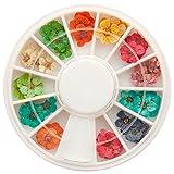 NAILFUN ® Fiori secchi per nail art, veri fiori essiccati, ca. 40 pezzi in 12 colori, in confezione circolare girevole