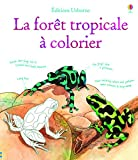 Faune et flore de la fôret tropicale à colorier...