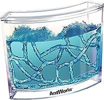 Hobi Eğitim Dünyası Antwork Karınca Çiftliği