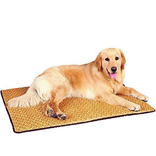 WENZHE Matratzen Sommer-Schlafmatten Strohmatte Teppiche Großes Hundekissen Kühlung Beständigkeit Gegen Biss Faltbar, A/B, 4 Größen (Farbe : B, größe : 100 × 69 × 2cm)