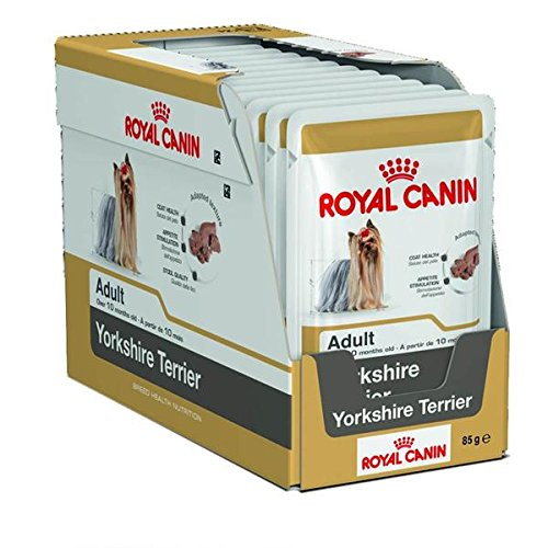 6 x 85g Pouch Royal Canin Wet Breed Yorkshire Terrier Supplied by Maltby's UK