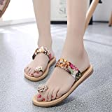 Dragon868 Women Fashion Summer Sandals, Flat Flip Flops Flower Decor Bohemia Shoes