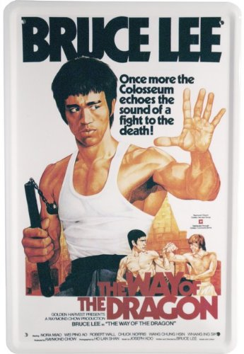 Diseño de Bruce Lee 20 x 30 cm publicidad Retro película Dragon chapa 924