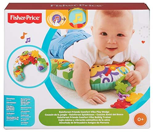 Fisher-Price Cojín de actividades para bebé recién nacido (Mattel CDR52)