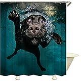 QEES Duschvorhang lustige Labrador Hund Schwimmen im Wasser mit Haken wasserdicht Bad YLB11 (150cm Breitex180cm Höhe, Hund)
