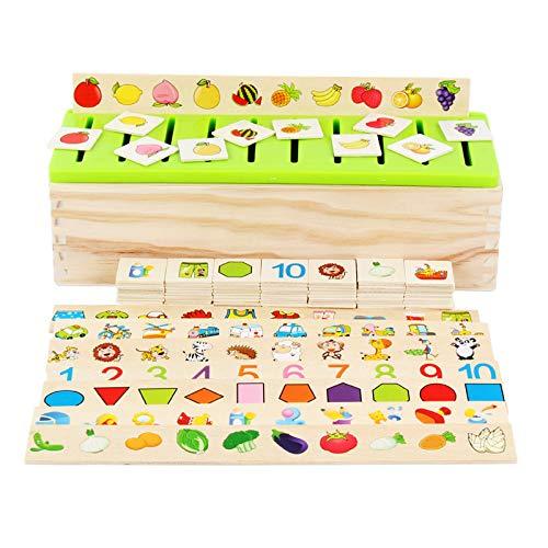 Holz Wissen Klassifizierung Box - Early Learning