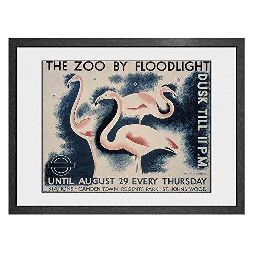 GB Eye Transport for London, The Zoo von Flutlicht Print, Holz, Mehrfarbig, 60x 3,5x 80cm -