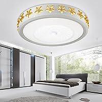 CLG-FLY Semplice moda turno la camera da letto lampada led atmosferici camera moderna sala da pranzo salotto lampada illuminazione lampade a soffitto ,Piccolo bianco caldo