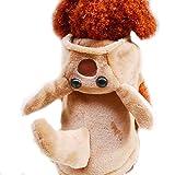 Best Disfraces de Halloween canguro - Divertido disfraz de perro de Halloween, gato, canguro Review